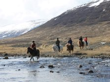 Riding to the Coast - Riding tour in the Westfjords of Iceland