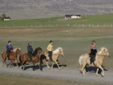 Pleasure in every hoofstep - Riding Tour in Skagafjörður with Esja Travel and Hestasport