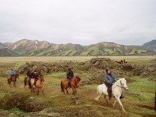 Riding Tours in Iceland - Esja Travel.